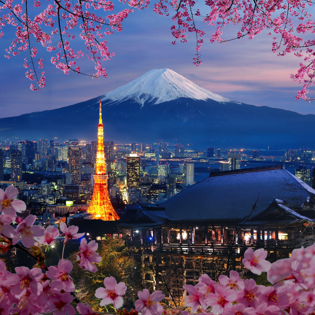 Bespoke Japan Tours - Ancient and Modern